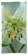 White Tiger Lily Beach Towel