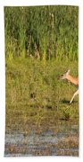 Whitetail Beach Towel
