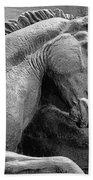 Wild Mustang Statue I V Beach Towel