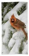 Winter Cardinal Beach Towel