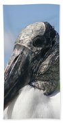 Wood Stork  Beach Towel