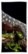Yellow Spotted Tropical Night Lizard Beach Towel