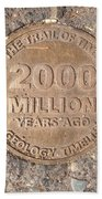 2000 Million Years Ago Beach Towel