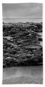 2005 Pura Acqua #02 Beach Towel