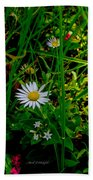 2015 08 23 01 A Flower 1106 Beach Towel