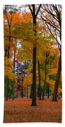 2015 Fall Colors - Washington Crossing State Park-1 Beach Towel