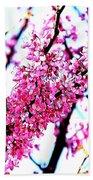 2016-03-18 Redbud Tree In Bloom Beach Towel