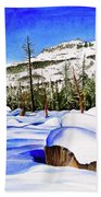 #202 Donner Summit Beach Towel