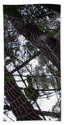 Australia - Spider Web High In The Tree Beach Towel