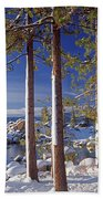 211257 Snow On Tree Sides Lake Tahoe Beach Towel