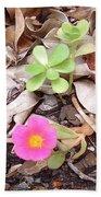 Australia - Pink Flowers Beach Towel