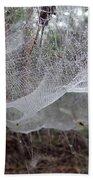 Australia - Concave Spider Web Beach Towel
