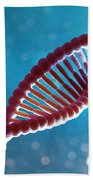 Dna Structure Beach Towel