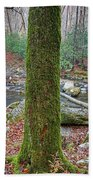 Great Smoky Mountains National Park Beach Towel