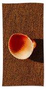 Beach Shell Beach Towel
