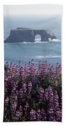 2a6101 Arched Rock And Blue Pod Lupine Ca Beach Towel