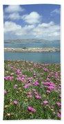 2a6106 Ice Plant Doran Beach Ca Beach Towel