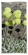 2da5927-dc Sulpher Flower Beach Towel