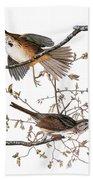 Audubon: Sparrow, (1827-38) Beach Towel