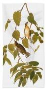 Audubon: Warbler Beach Towel