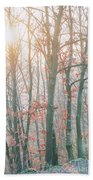 Autumn Forest Beach Towel