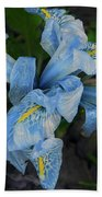 Blue Iris Beach Towel