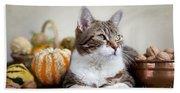 Cat And Pumpkins Beach Towel