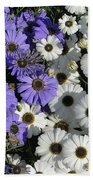 Cineraria Beach Towel