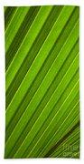 Coconut Palm Leaf Beach Towel