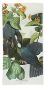 Crowned Pigeon Beach Towel