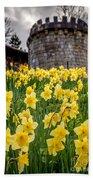 Daffodils And Bar Walls, York, Uk. Beach Towel
