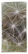 Dandelion Close-up. Beach Towel