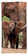 Elephants Beach Towel