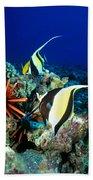 Hawaiian Reef Scene Beach Towel