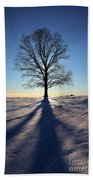 Lone Tree In Snow Beach Towel