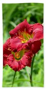 Red Lily Pair Beach Towel