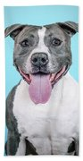 Roscoe2 Beach Towel