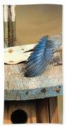 Spread Your Wings Beach Towel