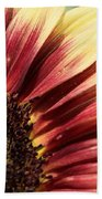 Sunflower Named Ruby Eclipse Beach Towel