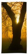 Sunrise Trees Fog Beach Towel
