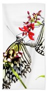 The Extraordinary Rice Paper Butterfly A Series Beach Towel