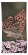Tramonti Butterfly Beach Towel