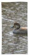 Waterfowl Beach Towel