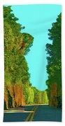 34- Enchanted Highway Beach Towel