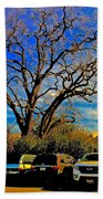 365 012716 Ancient Valley Oak And Parking Beach Towel