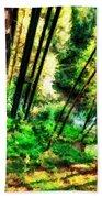 Landscape Image Beach Towel