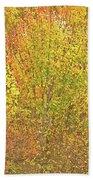 3991 Autumn Profusion Beach Towel