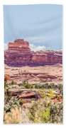 Views Of Canyonlands National Park Beach Towel