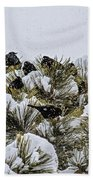 4 And 20 Blackbirds Beach Towel