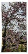 Central Park Spring Beach Towel